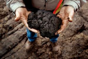 1. tar-sands-in-hands